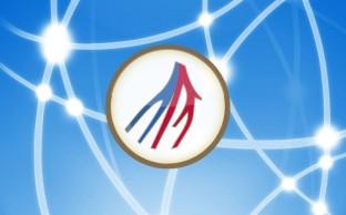 Netzwerk und Partner